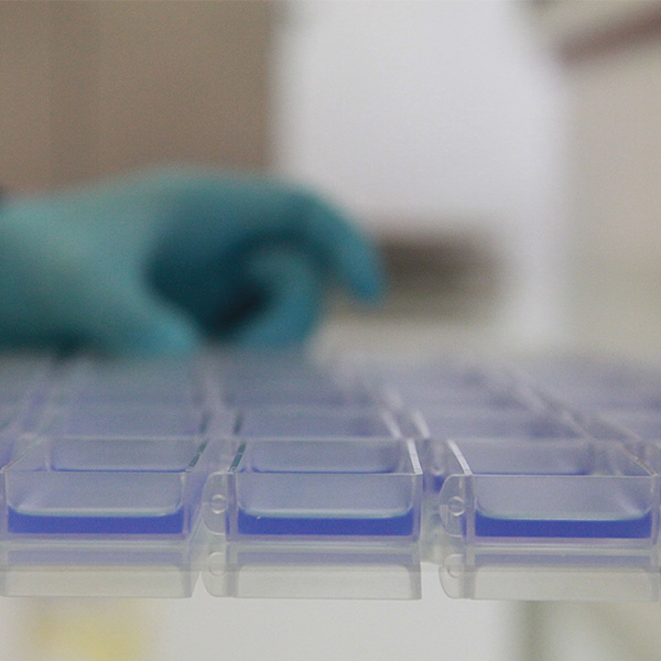 idbiotech